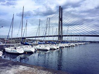 田尻漁港、岡田浦漁港の日曜朝市と、深日漁港のフェスティバルへ