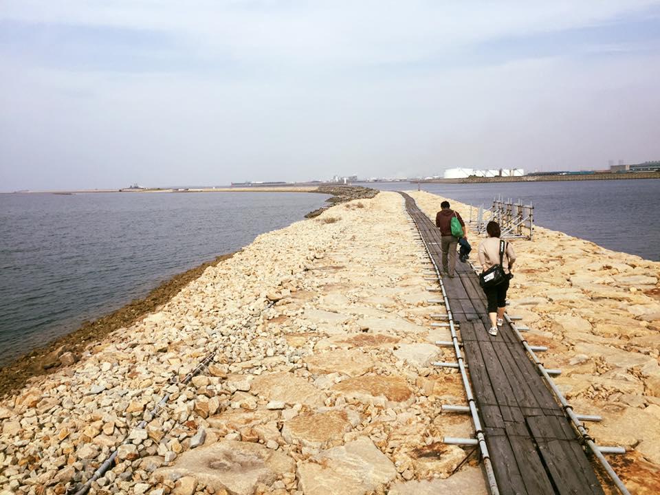 岸和田には人工の干潟があるんです!