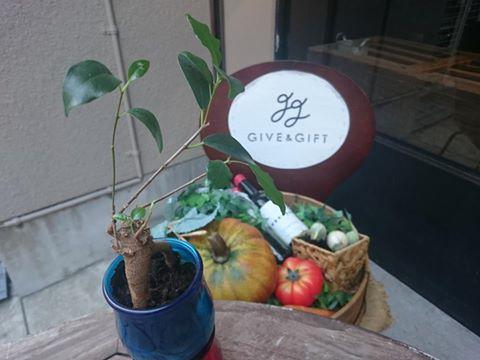 Give&gift(ギブアンドギフト):GIVE&GIFT cafeはwifiも使用可能♪