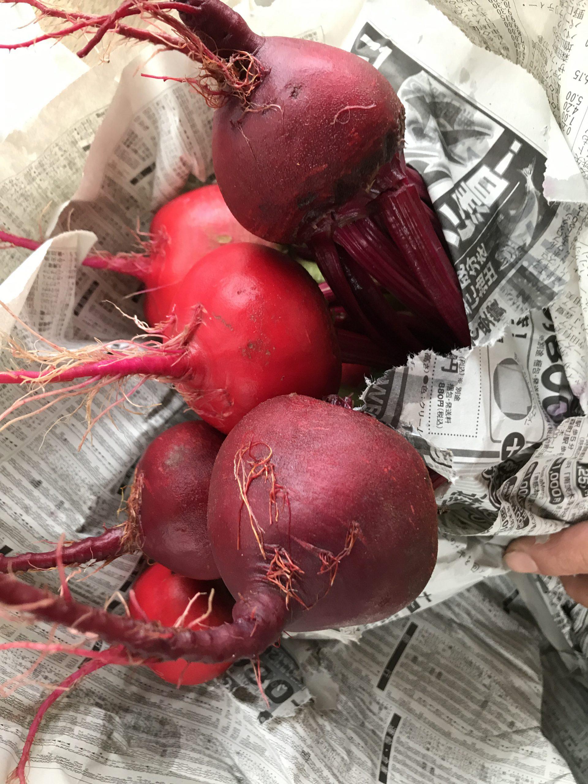 市内のイタリア野菜を卸につなげる!